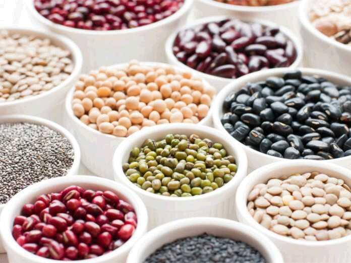 beans for diabetics